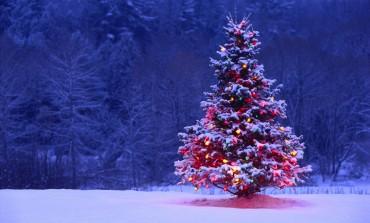 Новорічно-різдвяні заходи у Тернополі та області (Афіша)