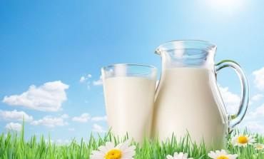 На Бережанщині збудують молочно-заготівельний комплекс